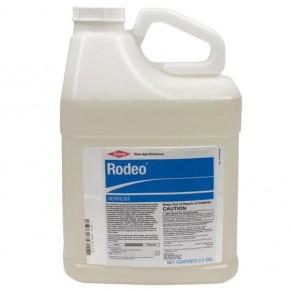 Rodeo / Shore-Klear